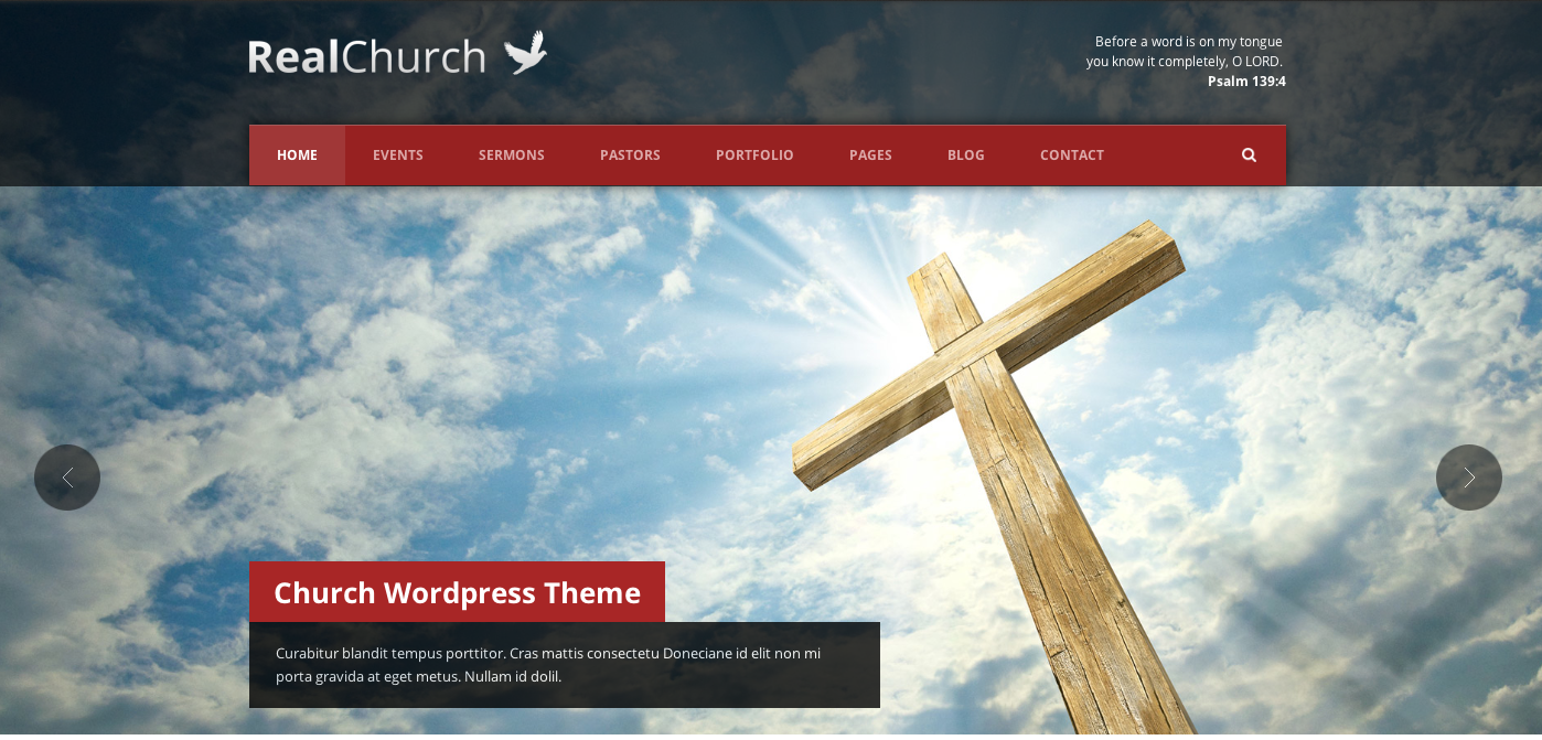 WordPress Series: What should I think about when I choose a WordPress theme?